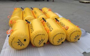 300kg Lifeboat Load Test Water Bag pictures & photos