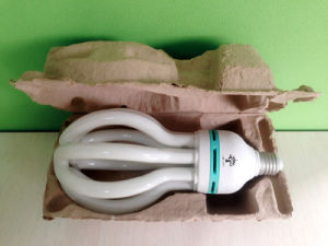4u Shaped 55W 60W 65W 70W Lotus Energy Saving Lamp CFL pictures & photos