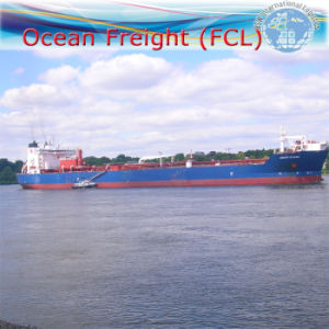 Ocean Freight FCL Shipping From Ningbo to Manzanillo (Mexico) pictures & photos