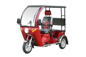 High Quality 110cc Three Wheel Handicapped Motorcycle pictures & photos