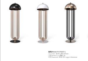 Modern Design Copper Aluminum Floor Lamps (KAF8247-L) pictures & photos