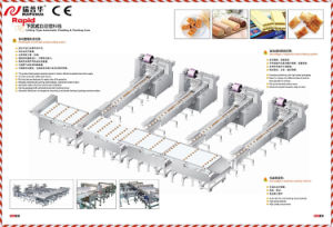 Sponge Cake Packing Machine Zp420 pictures & photos