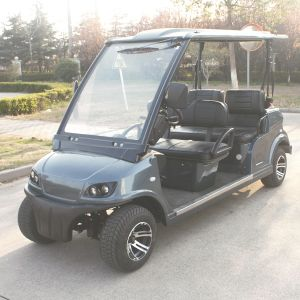 EEC Approved 4 Seats Steet Legal Electric Cart (DG-LSV4) pictures & photos