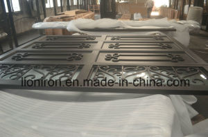 Factory Price High Quality Elegant Wrought Iron Garage Doors pictures & photos
