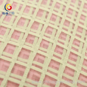 100%Polyester Organza Grid Organdy Fabric pictures & photos