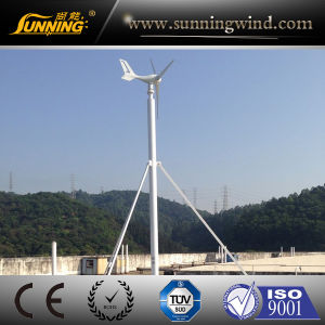 Renewable Energy 300W Residential Wind Turbine Generator (MINI) pictures & photos