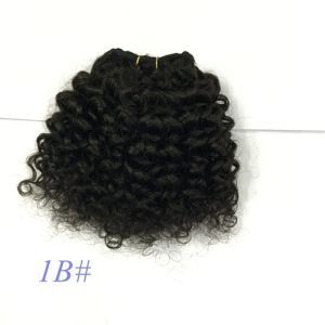 Human Hair Weft Kinky Curly Hair Extension/Hair Weaves pictures & photos