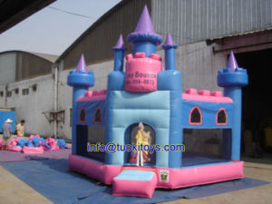 Customized Inflatable Bouncer Made in China (B019) pictures & photos