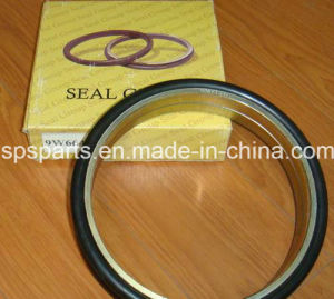 Seal Ring pictures & photos