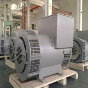 Single Phase Three Phase a. C. Synchronous Tfw Brushless Synchronous Alternator pictures & photos