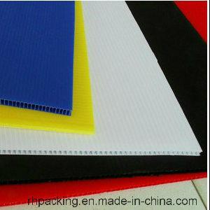 8′ X 4′ (2.4 X 1.2m) Correx Corflute Coroplast Sheets pictures & photos