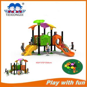 China Amusement Park Outdoor Playground Equipment Txd16-Bh105 pictures & photos