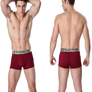 High Quality Boxer Briefs Plain Men Underwear pictures & photos