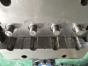 High Qualtiy Customs Made Injection Mould (BR-IM-038) pictures & photos