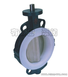 Half Lining PTFE Butterfly Valve ANSI pictures & photos