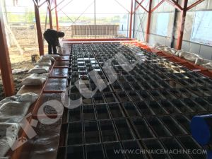 Focusun High Quality Block Ice Plant pictures & photos