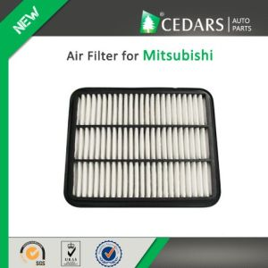 China Auto Parts Quality Supplier Air Filter for Mitsubishi pictures & photos