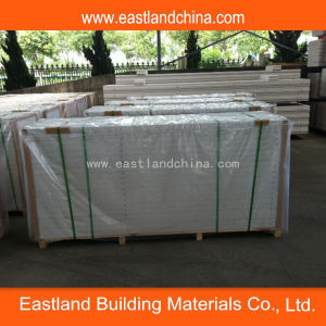 Chinese Hebel Panel pictures & photos