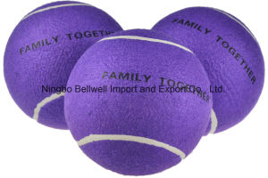 Durable Rubber Soft Pet Tennis Ball Pet Paw Claw Dog Toy Ball pictures & photos