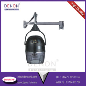 950W Top Quality Beauty Hair Drying (DN. WH9709) pictures & photos