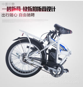 Ce TUV Certificate Foldable Electric Bike (LWEB-T2007F) pictures & photos