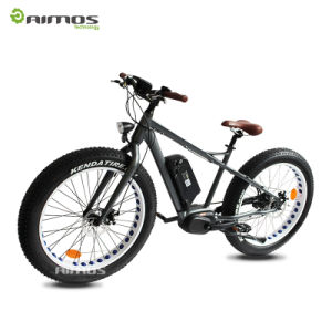 26′′ 36V 250W Hidden Battery MID Drive Motor Electric Bike pictures & photos