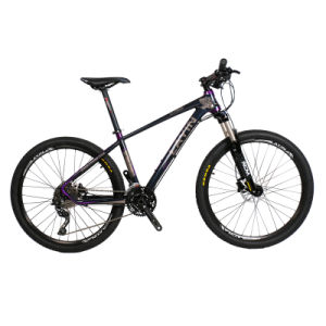 China Shenzhen Factory Cheap Adult Bicycle 26er*17inch Mountain Bike pictures & photos