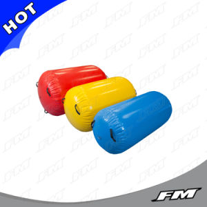 FM Inflatable Air Roll, Inflatable Air Barrel, Air Tumble Roll for Gym pictures & photos