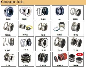 Pump Seal, Bellow Seal, Mechanical Seal for Marine Pumps pictures & photos