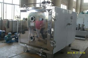 Food Flavor Paste Vacuum Dryer pictures & photos