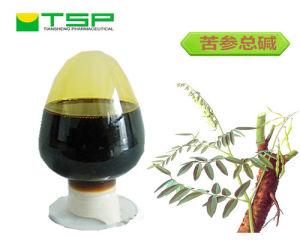 GMP Manufacture API Alkaloids Sophora Flavescen Liquid Matrine pictures & photos