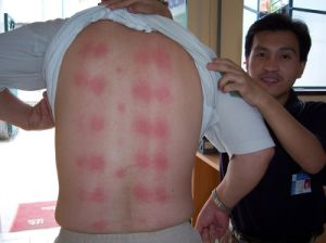 Medical Thermal Jade Massage Bed (JKF-YS-EK) (CE Certified) ISO 13485 Certified pictures & photos