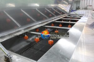 Dup-5000 Vegetable Fruit Washing Machine by Water Spray and Conveyor pictures & photos
