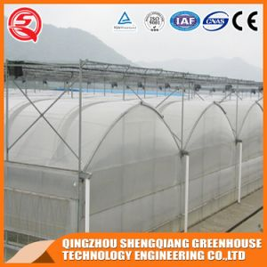 Agriculture Hydroponics Vegetable/ Garden Plastic Film Green House pictures & photos