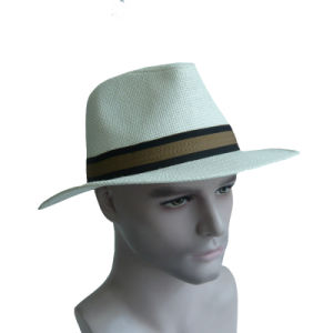Big Brim Panama Hat pictures & photos