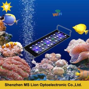 Wireless Sunrise Sunset LED Aquarium 108W pictures & photos