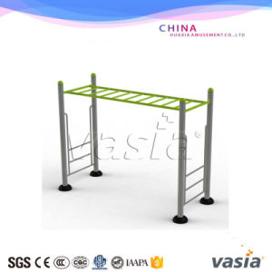 Vasia Ladder Fitness Equipment for School (VS-6250D) pictures & photos