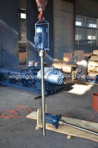 Xinglong Vertical Single Screw Pump for Empty Barrel pictures & photos