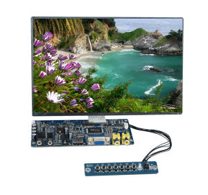 "IPS Panel 10.1""LCD Touch SKD Module pictures & photos"