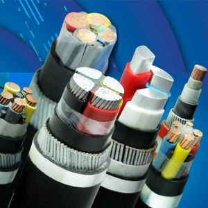 Low Voltagepvc Insulated Steel Wire Armored Swa Power Cable pictures & photos