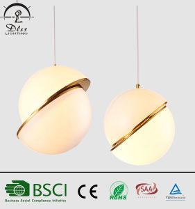 European Designer Acrylic Suspensive Pendant Lamps for Hotel Decorative Lighting pictures & photos