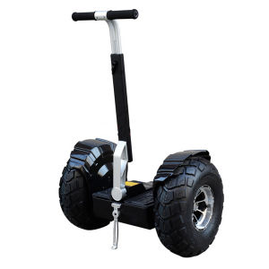Biggest Promotion Two Wheels Self Balancing Scooter Golf Trolley Golf Scooter pictures & photos