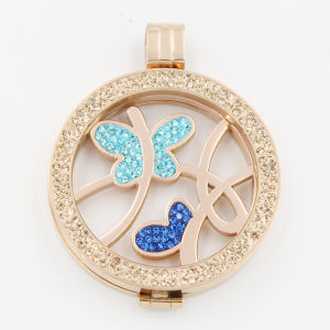 Butterfly Coins Fit with Locket Pendant Fashion Jewelry pictures & photos