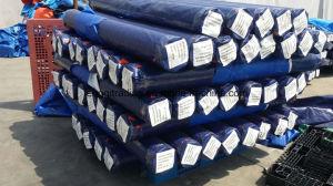 PE Tarpaulin in Roll PE Tarpaulin for Africa Market - Tanzania, Kenya, Uganda pictures & photos