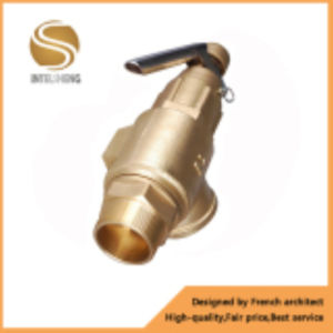 Brass Safety Valve with Thread for Oil pictures & photos