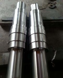 304 Bespoke Stainless Steel Forging Shaft pictures & photos
