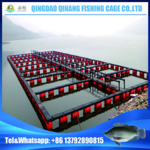 Service Life 15 Years Aquaculture Equipment Floating Pontoon pictures & photos