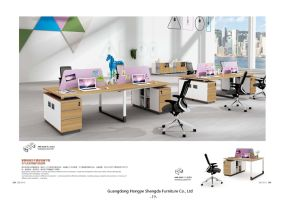 Modern Office Workstation Screen Partition (H90-0213)