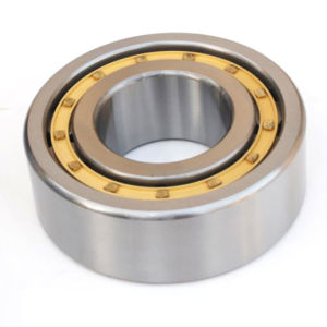 High Quality Cylindrical Roller Bearing (NJ224) pictures & photos