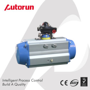 Chinese Wenzhou Manufacturer Single Pneumatic Actuator pictures & photos